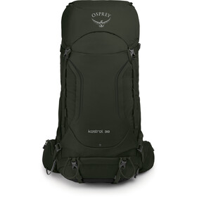 Osprey Kestrel 38 Backpack Men picholine green